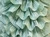 Samba Mint Green